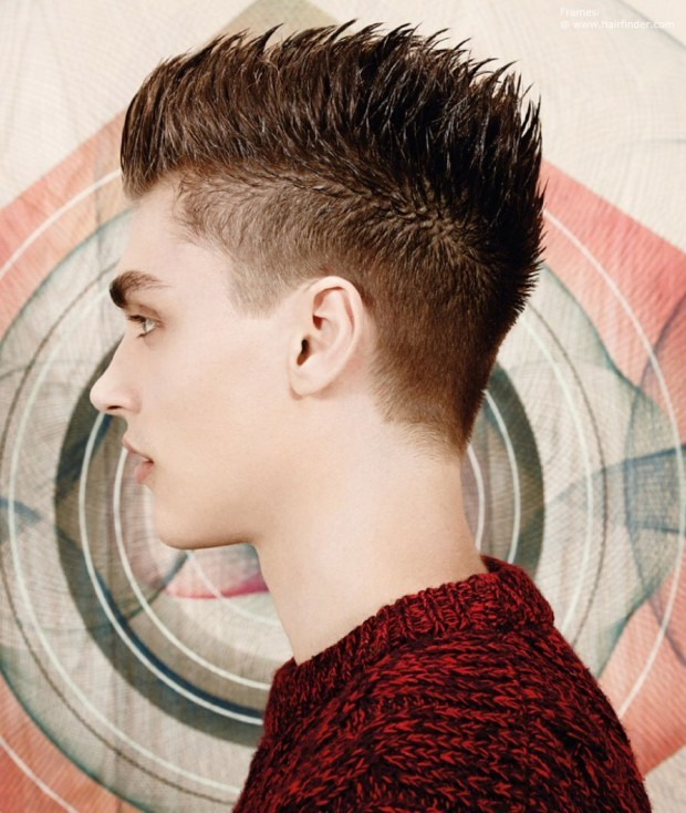 Men's hairstyle Hedgehog 1
