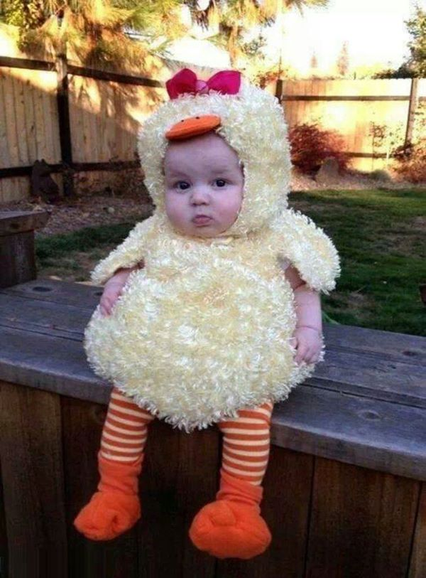 cute-costume-baby-chicken