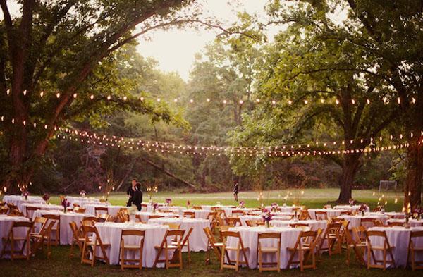 used-peacock-wedding-decorations